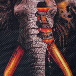 neopreno raportas dramblys